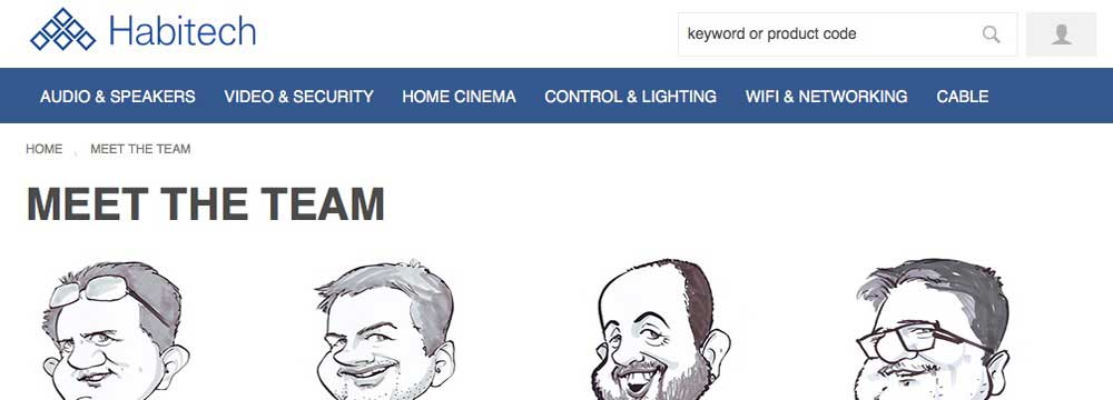 Quick company website caricatures - meet the team